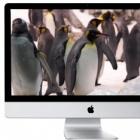 iTV-Gerüchte: Apple baut Fernseher und nächstes iPad mit Sharp