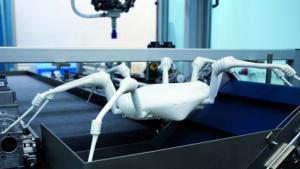 Roboter des Fraunhofer IPA: Form und Funktion einer Spinne