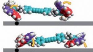 Nanoauto: Eher Paddel als Räder