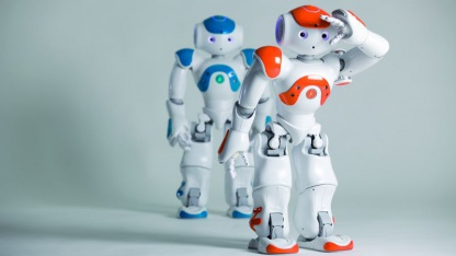 Bürstet auch mal eine Katze: humanoider Roboter Nao