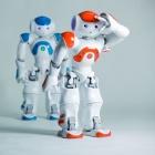 Teleoperation: Mensch bürstet Katze via Roboter