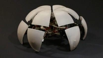 Gehende Kugel: Roboter Morphex