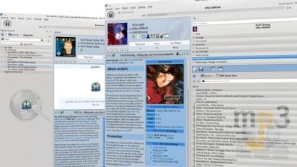 Mit Amarok 2.5 lässt sich Musik im Amazon-MP3-Store einkaufen.