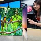 55 Zoll: LG zeigt OLED-Fernseher mit 4-Farb-Pixeln