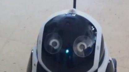 Roboter Qbo: Ich oder ein Anderer?