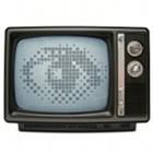 Golem.de guckt: George Orwell und der nigerianische Wahlkampf