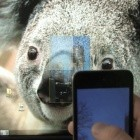Virtual Projection: iPhone als virtueller Beamer