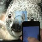 Virtual Projection: iPhone als virtueller Beamer