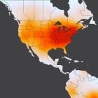 DDoS-Angriff: Anonymous rächte Megaupload per LOIC
