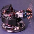 Shrewbot: Roboter orientiert sich wie eine Maus mit den Schnurrhaaren