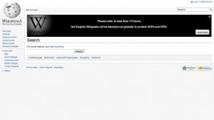 Wikipedia-Onlinedemonstration: Solidarität aus Deutschland