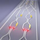 Scott Aaronson: Die 100.000-US-Dollar-Quantencomputer-Wette