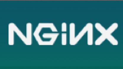 Nginx mit ersten kommerziellen Angeboten