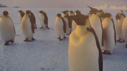 Die Stromsparoptionen für Intels Sandy Bridge sollen im Linux-Kernel 3.4 endgültig funktionieren.