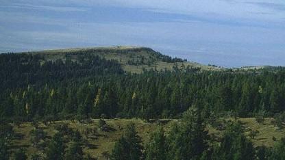 Blick von den Grizzly Mountains auf Prineville