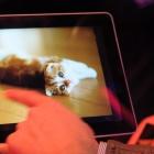 Mediapad 10 FHD: Huaweis Full-HD-Quadcore-Tablet mit Android 4.0