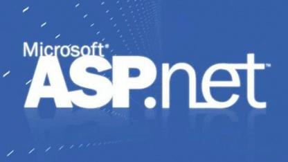 ASP.Net Web API und ASP.Net Web Pages sind unter der Apache-Lizenz 2.0 freigegeben.