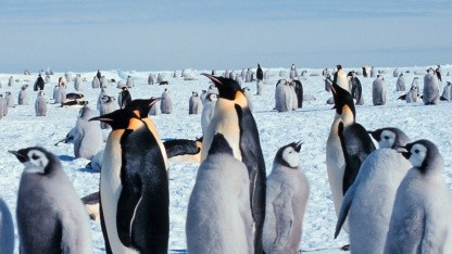 Linux 3.4 hat bessere Grafikkartenunterstützung und ein 32-Bit-ABI.