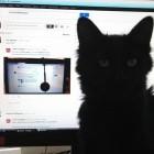 Google+-Redesign: Whitespace-Humor und verärgerte Entwickler