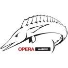 Browsererweiterungen: Opera stellt Unite und Widgets ein