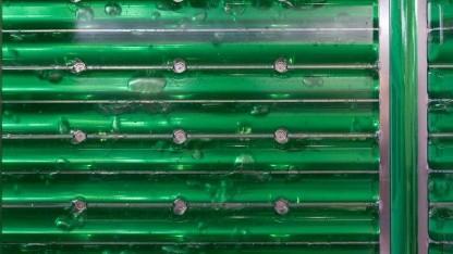 Bioreaktor: Farbstoff für Lippenstift aus Algen