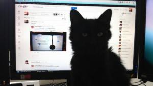 Google+-Nutzer suchen kreative Lösungen für den Whitespace im Google+-Redesign.