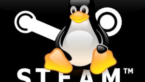 Der Steam-Client wird für Linux entwickelt.