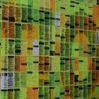 Re:publica 2012: Neue Hallen, provokante Themen