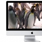 Anonyme Quellen: Apple-Fernseher mit Siri und Facetime
