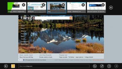 Internet Explorer 10 als einziger Browser unter Windows RT?