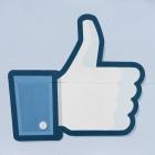 Soziale Netzwerke: Bund unterstützt Facebook-Initiative Smart