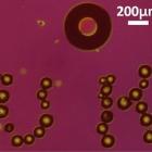 Wissenschaft: Luftblasen werden zu lasergesteuerten Robotern