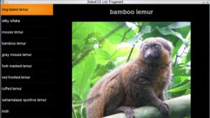 Screenshot des XobotOS