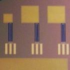 Wissenschaft: Brennstoffzelle wird mit Körperflüssigkeit betrieben