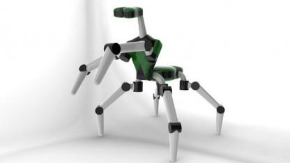 Mantis: Das vordere Beinpaar dient nicht nur zum Laufen.