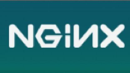 Betamodul bringt Nginx 1.3 SPDY bei.