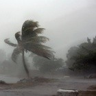 Krawall im Netz: Wie entfache ich einen Shitstorm?