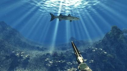 Der Barracuda ist einer der selteneren Fische in Depth Hunter.