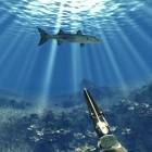 Test Der Speerfischen-Simulator: Fischers Fritze fischt immer dieselben Fische