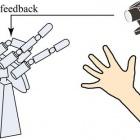 Gewinnertyp: Japanischer Roboter trickst bei Schere, Stein, Papier