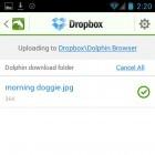iOS und Android: Mobotap öffnet Dolphin-Browser