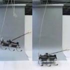 Robotik: Sechsbeiniger Laufroboter bekommt einen Schwanz