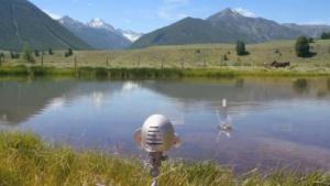 Roboter: Skippy flitscht per Interneteingabe Steine über den See