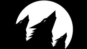 Firmenlogo Black Forest Games