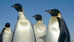 Der Linux-Kernel 3.5 ist veröffentlicht worden.