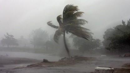 Shitstorm - wenn aus einem lauen Lüftchen ein Orkan wird