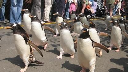 Linux 3.4 wird für zwei Jahre mit Updates versorgt.