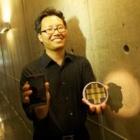 Elektronische Nase: Nanosensoren riechen Schadstoffe