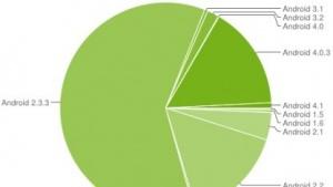 Jelly Bean läuft auf 0,8 Prozent der Android-Geräte.