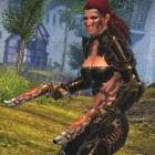 Arena.net: Guild Wars 2 für Mac auf Basis von Cider